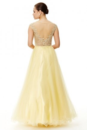 Banana Yellow Long Small Size V Neck Evening Dress Y6467