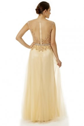 Long Small Size Sleeveless Open Back Evening Dress Y6469