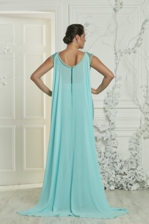 Long Taffeta Big Size Short Sleeve Evening Dress Y7159